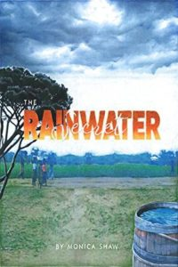The Rainwater Secret book cover